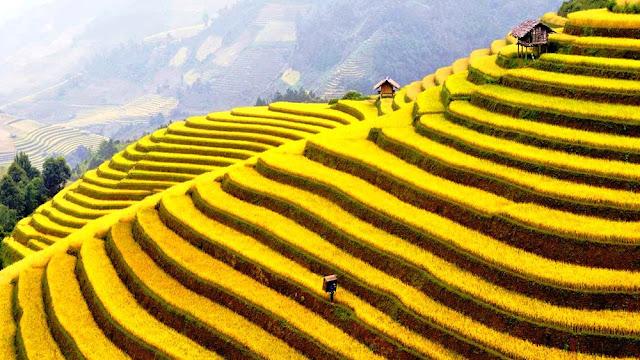 BAC son valley in Vietnam