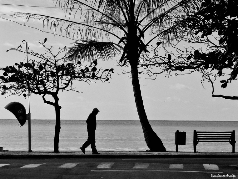 emphoka, photo of the day, Leandro Araújo, Panasonic DMC-FZ35