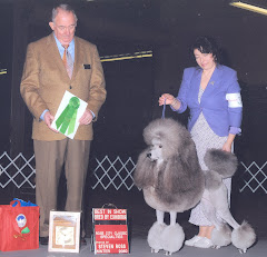 Best in Specialty Show Best Bred By Exhibitor
