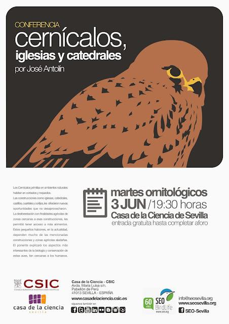 """Conferencia ornitológica organizada por el Grupo Local SEO-Sevilla de SEO/BirdLife en el museo Casa de la Ciencia de Sevilla. """"Cernícalos, iglesias y catedrales"""". Por José Antolín (Presidente DEMA)."""