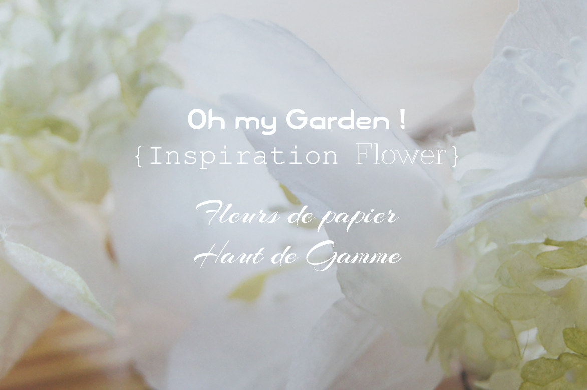 Oh My Garden !
