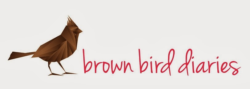 Brown Bird Diaries
