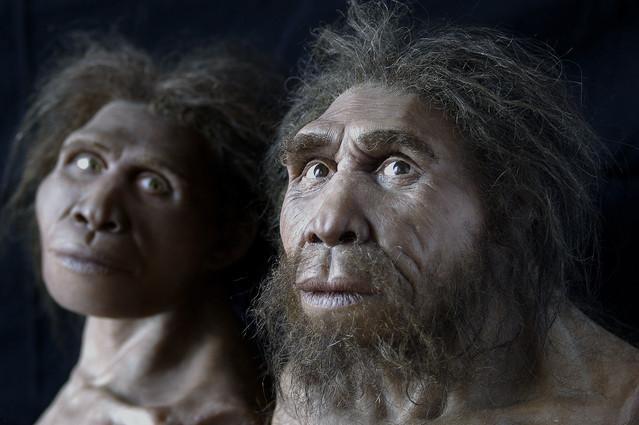 Caveman Artefacts : Caveman zezva s million year grin forces rewrite of