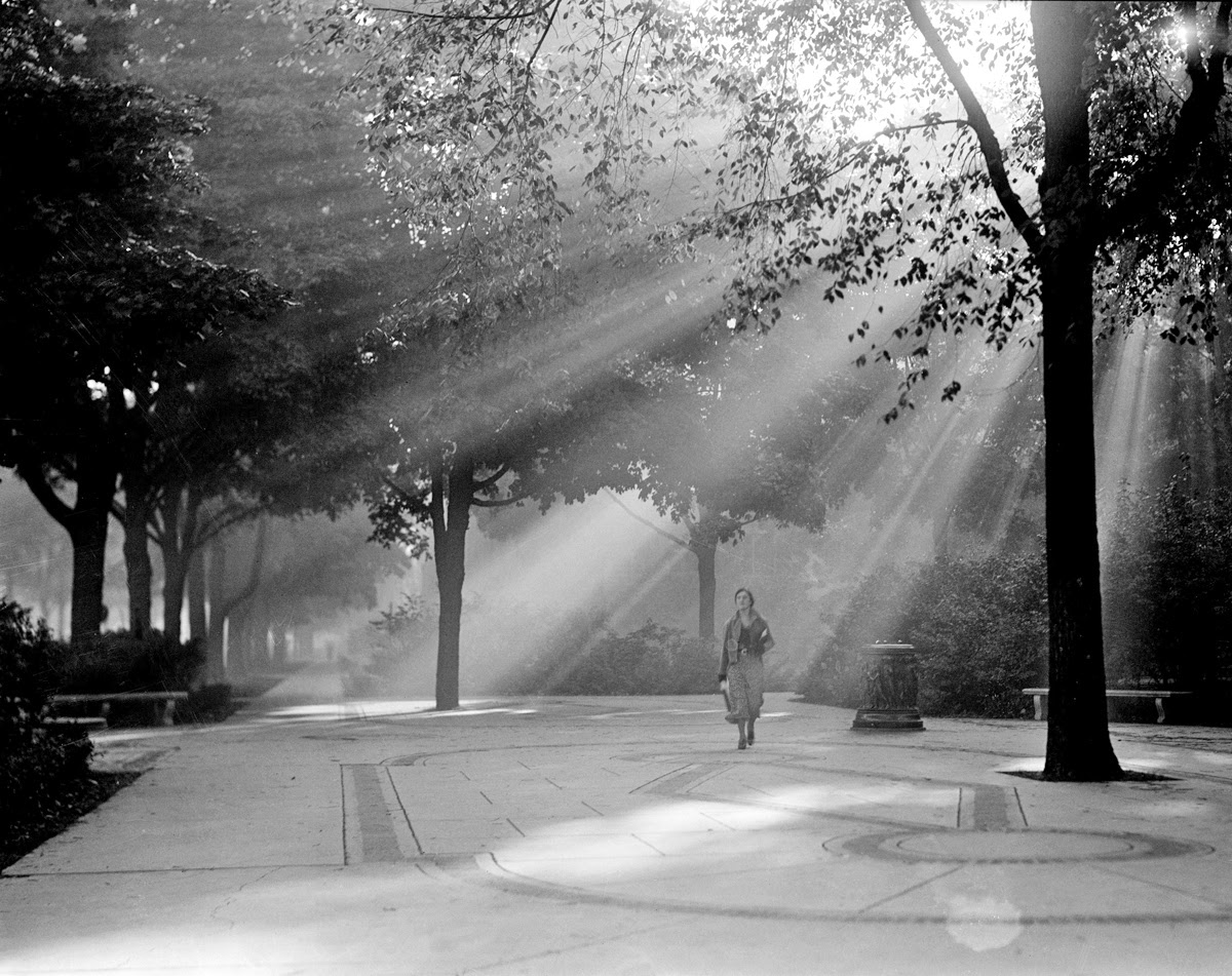 History in Photos: University of Michigan - photo#32