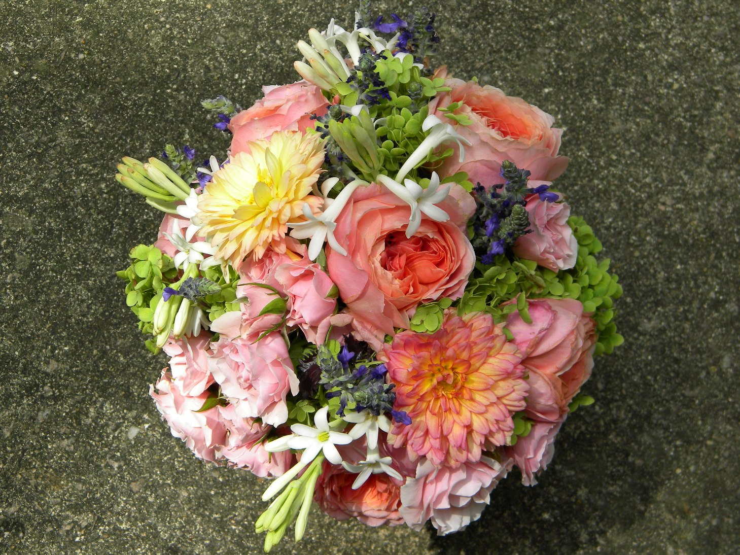 soft coral garden rose and pink dahlia bouquet