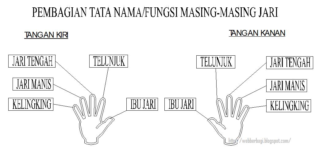 skema pembagian tugas mengetik jari