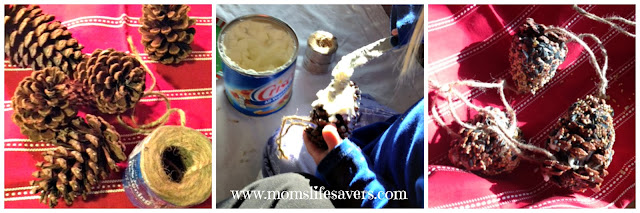 DIY Treats for Feathered Friends - Mom's Lifesavers