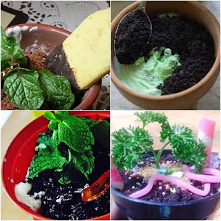 Resep Membuat Es Krim Pot