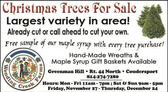 Christmas Trees @Wending Creek Farms
