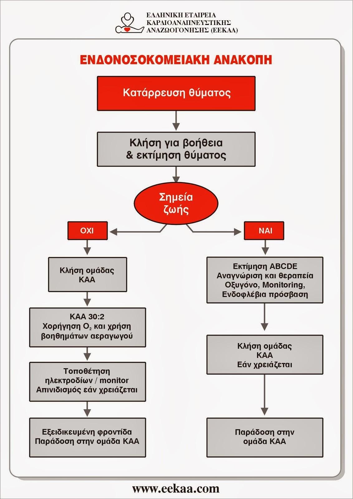ΑΛΓΟΡΙΘΜΟΣ ΕΝΔΟΝΟΣΟΚΟΜΕΙΑΚΗΣ ΑΝΑΚΟΠΗΣ 2010 (EEKAA - ERC)
