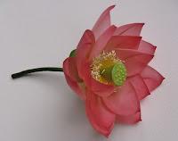 1+lotus+flower.JPG