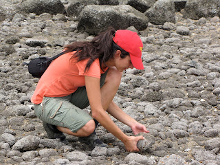 Rowshyra collecting marine snails at Playa Venado in Veracruz Panama!