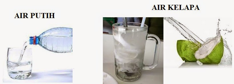 Manfaat Khasiat Air Putih Dan Air Kelapa
