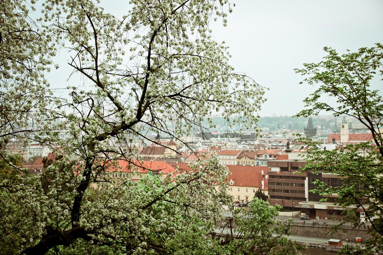 Letenske, Prag