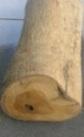 kayu jati mas, jati rakyat dan jati perhutani