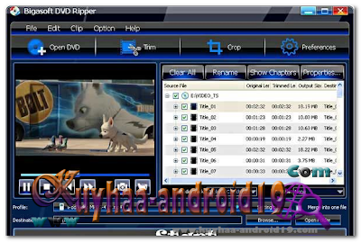 BIGASOFT DVD RIPPER 3.1.8.4694 FINAL