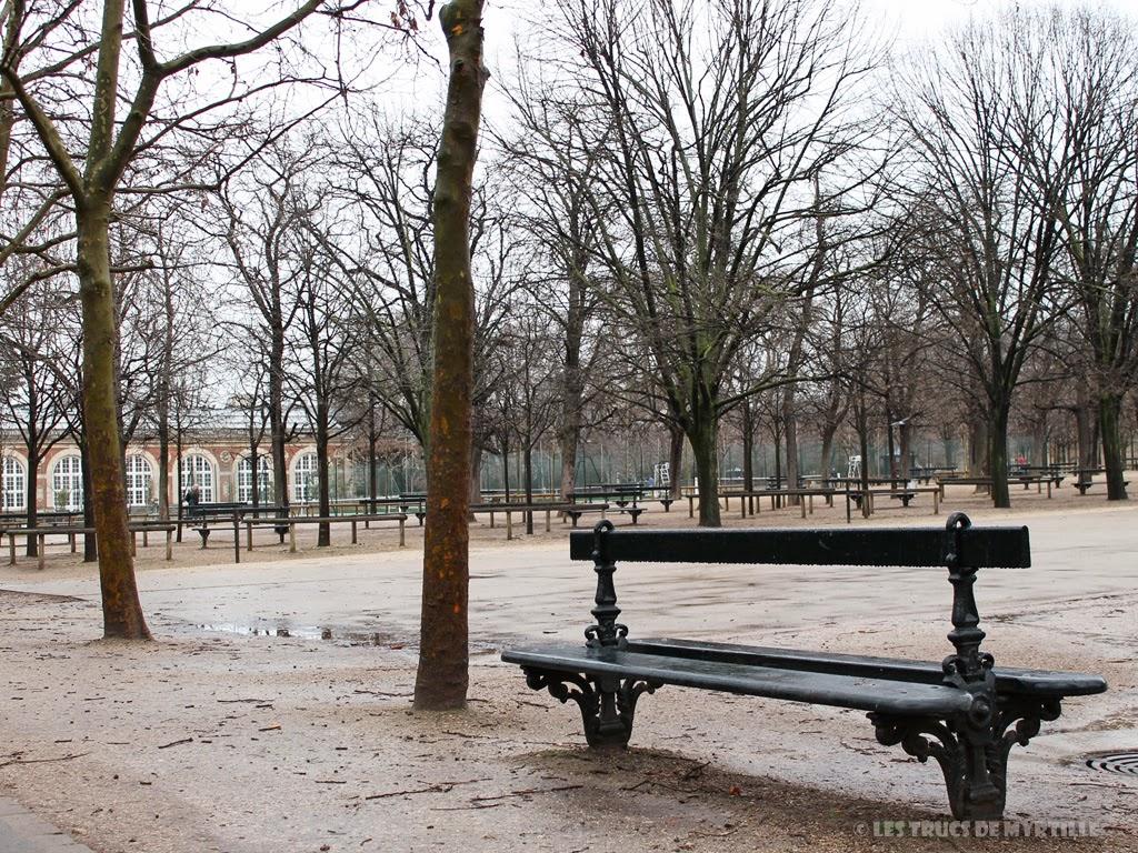 Fond d'écran #4 de FÉVRIER 2014, avec et sans le calendrier du mois - Jardin du Luxembourg (photo janv. 2014)