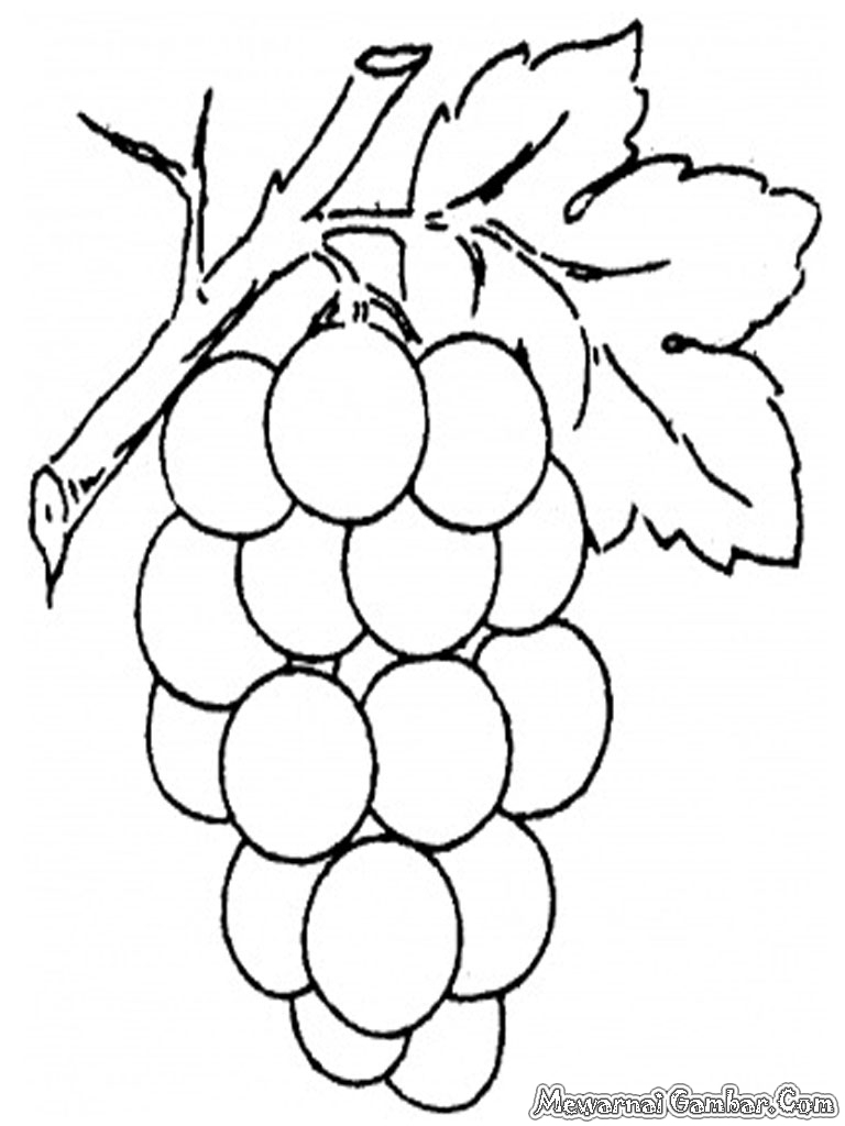 Grapes Coloring Pages Printable