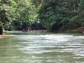 Taman Negara Batang Ai