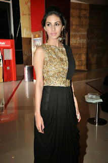 Actress Amyra Dastur Picture Gallery in Long Dress at Anekudu Audio Launch  67.JPG