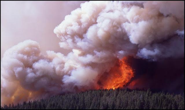historia del fuego, incendios, extincion