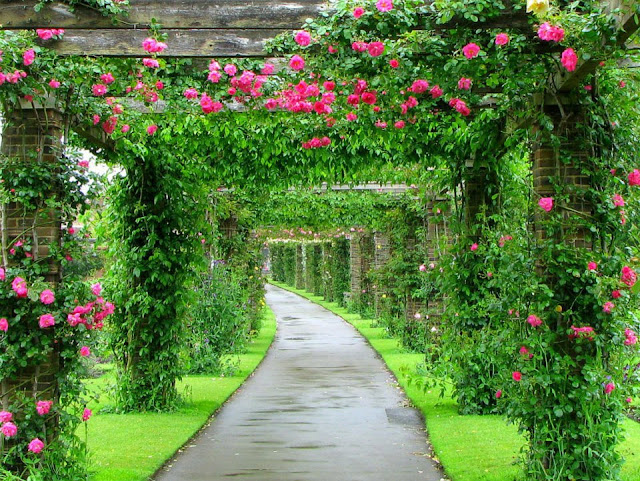 Most Beautiful Gardens in England