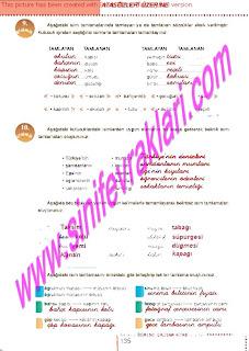 6.Sinif  Turkce Doku Yayinlari Ogrenci Calisma Kitabi Sayfa 135
