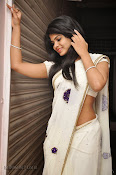 Alekhya Latest Photos in Saree at Donga Prema Audio-thumbnail-12