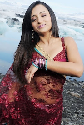 Actress Trisha in a Red transparetn Saree in a Song Sequence