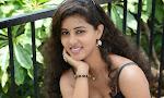 Pavani latest photos at KKMK movie launch-thumbnail