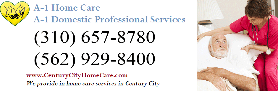 Century City In Home Care