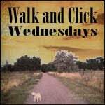 Walk and Click Wednesdays