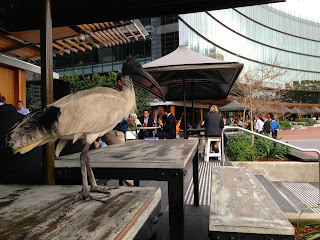 Taste Baguette and Grill, Darling Harbour, Sydney - Dining with the birds