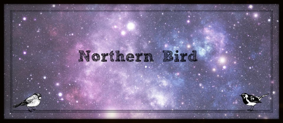 Northern Bird