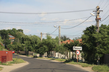 View of Pleșești