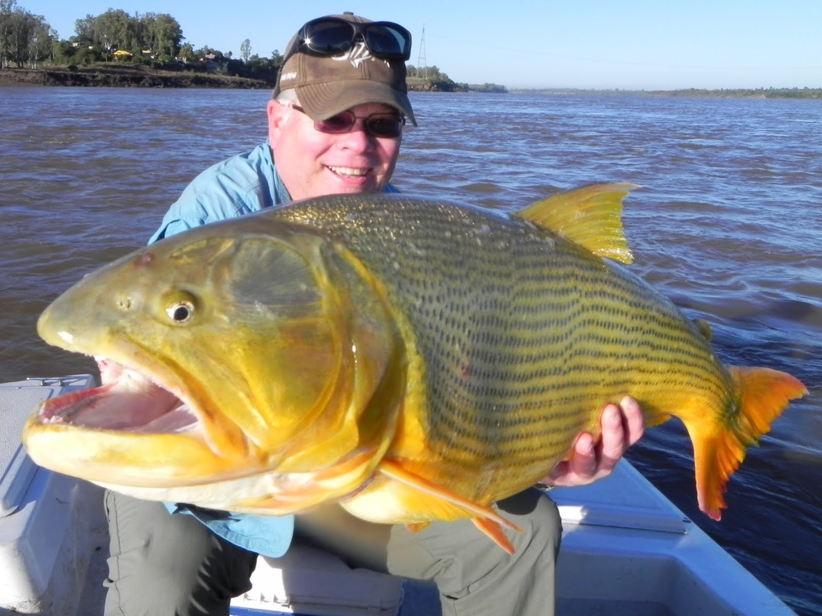 The Fishing News World 39 S Top 10 Toughest Freshwater Fish