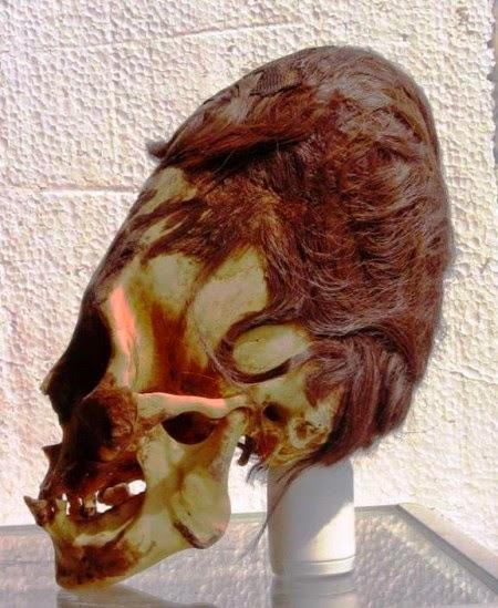 cranio alien