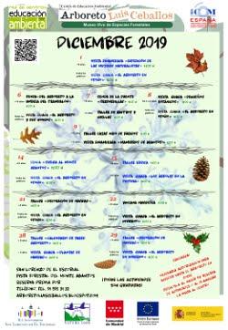 Próximas actividades: Diciembre