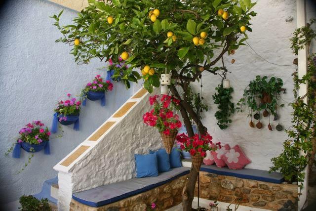 лимон для сада