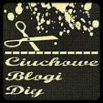 Ciuchowe Blogi DIY