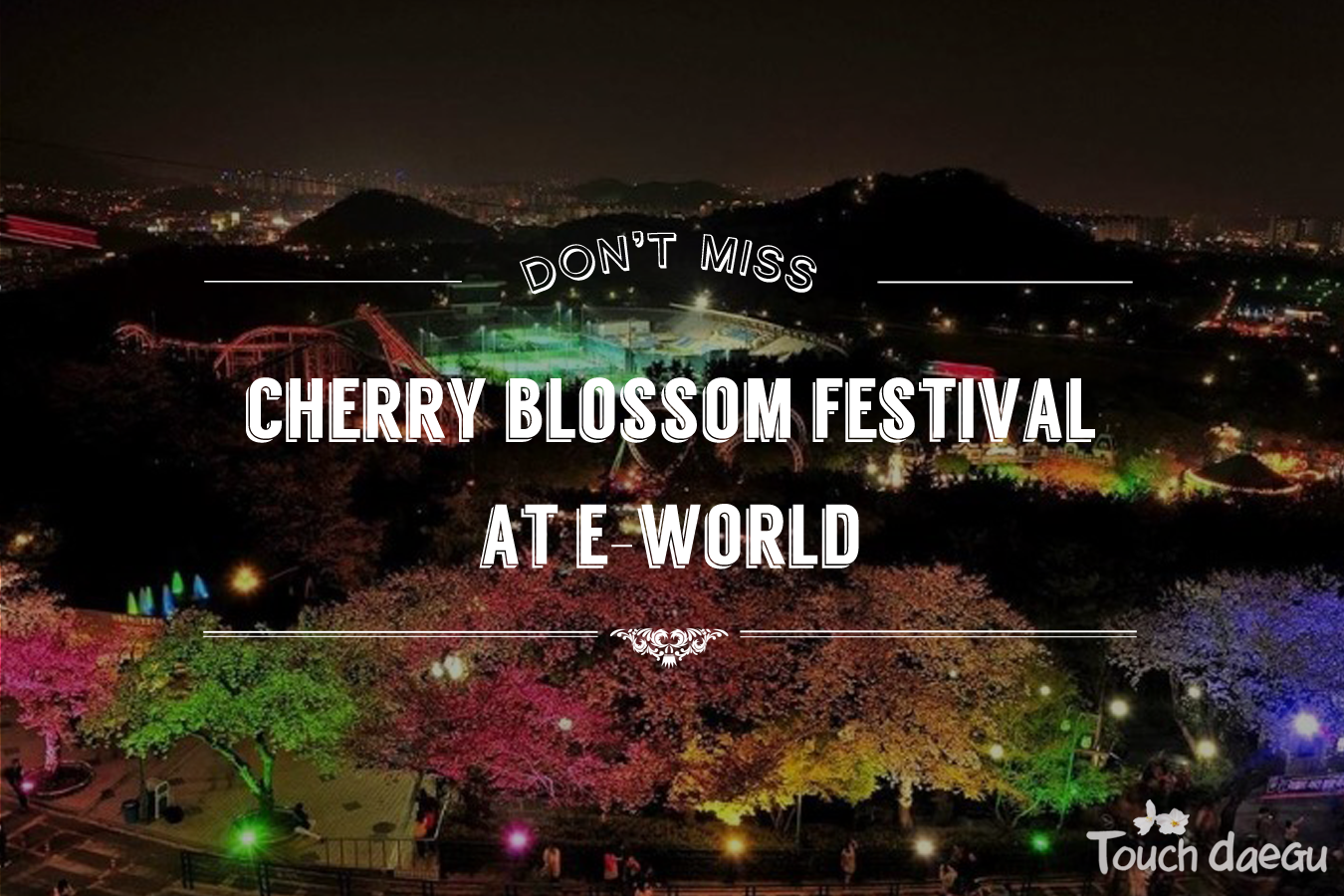 Daegu spring festival