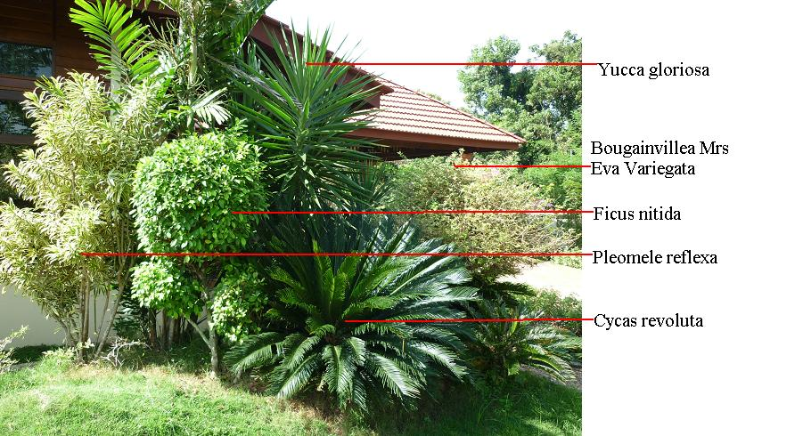 Image Result For Rekabentuk Lanskap Halaman Rumah Serta