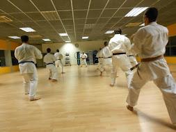 sala karate - kihon kumité