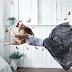 12 απίστευτες πληροφορίες για τον ύπνο και τα όνειρα...
