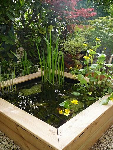 Bassin et jardin en terrasse les passions de kathy for Bassin de terrasse en bois