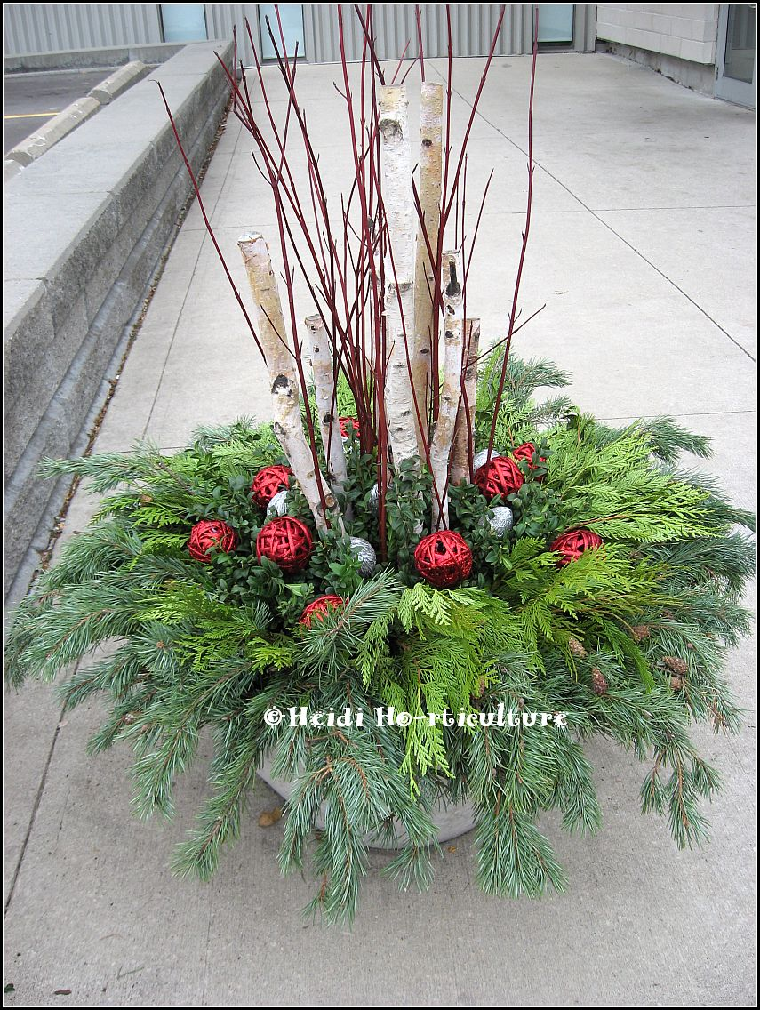 Decorating Ideas > Heidi Horticulture December 2012 ~ 085848_Christmas Decorating Ideas For Outdoor Planters