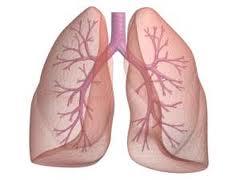 Informatii despre bolile pulmonare