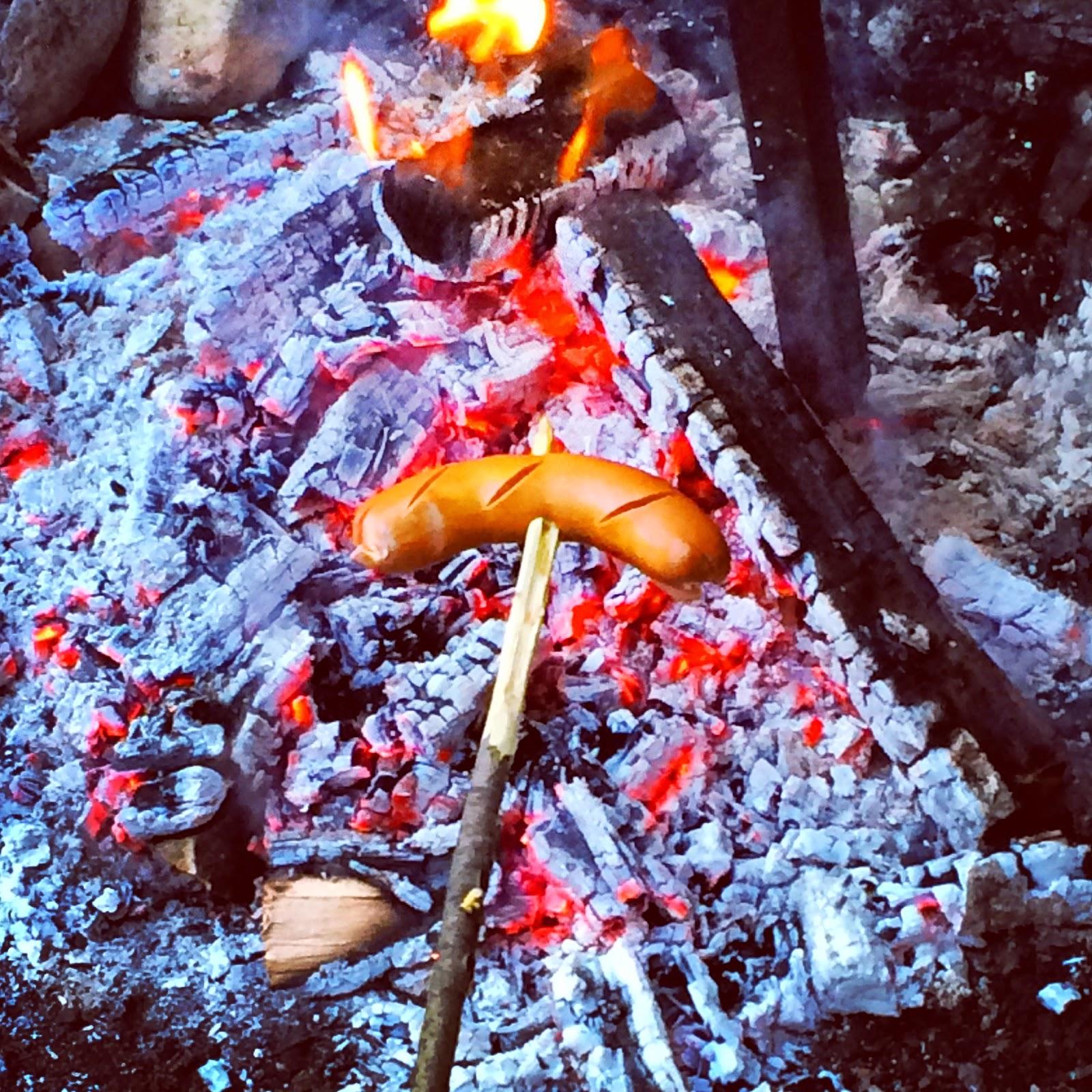 Grillen im Wald, essen, Fleisch, Freunde, Spass, barbecue in the forest, eating, meat, Friends, Fun