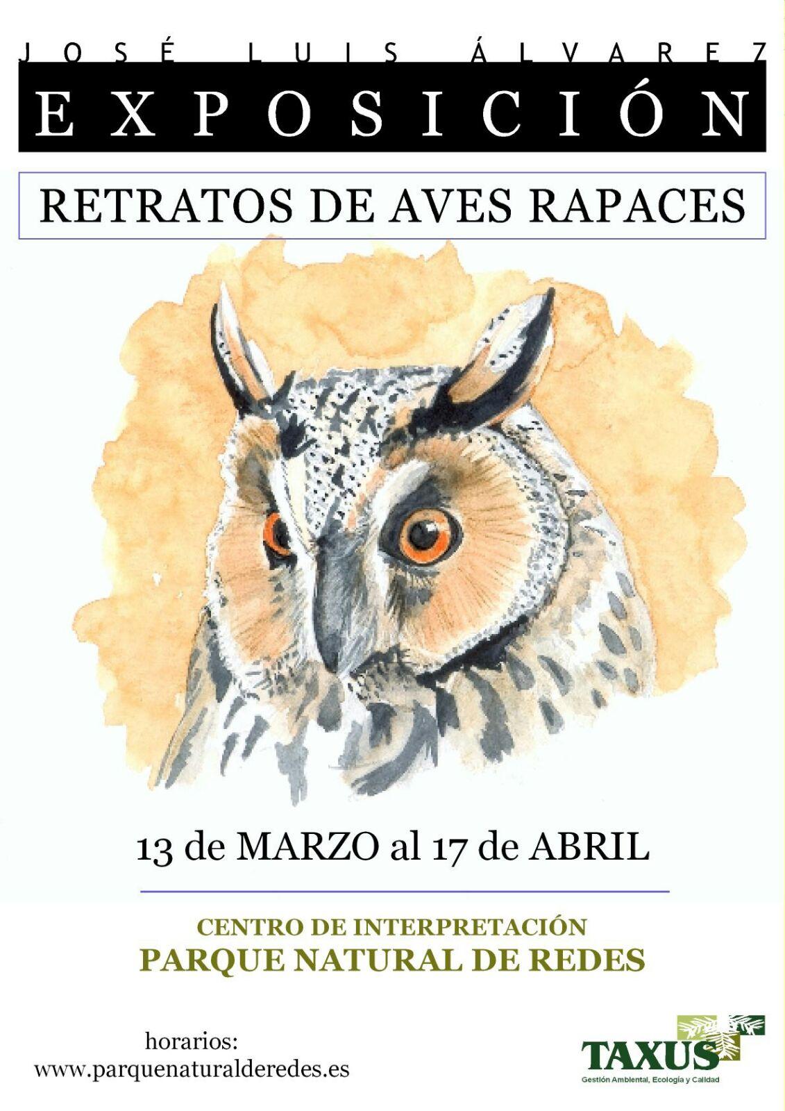 EXPOSICION RETRATOS AVES RAPACES