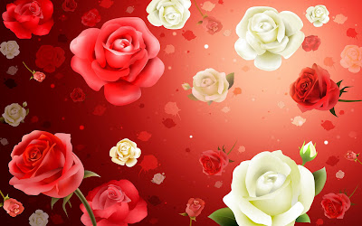 Hq colorful rose wallpaper - red-pink-roses-wallpapers